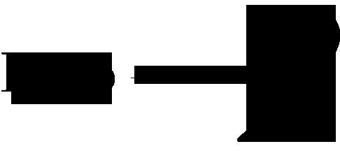 2. Logo Nina Ricci